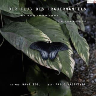 Der_Flug_des_Trauermantels